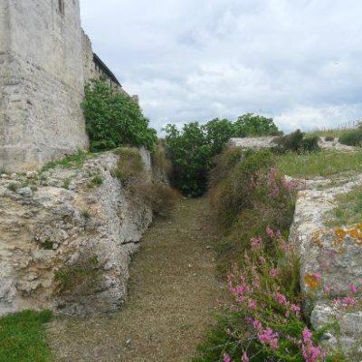Il fossato[The Moat]